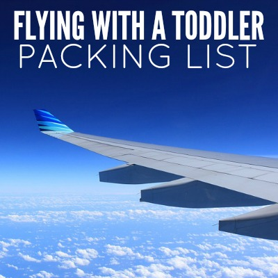 FLYING WITH A TODDLER 2